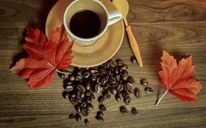 Обои cup, чашка, leaves, кофе, autumn, beans, coffee, книга, осень