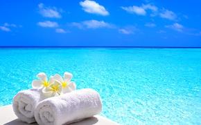 Картинка море, цветы, полотенце