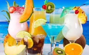 Картинка апельсин, кокос, киви, лайм, ананас, напитки, коктейли, дыня