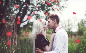 Картинка поцелуй, невеста, лепестки роз, свадьба, жених