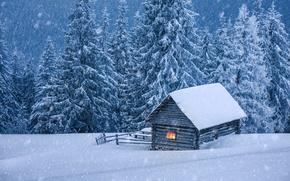 Картинка зима, снег, елки, домик, хижина, landscape, winter, snow