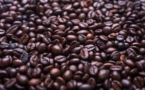 Обои кофе, зерна, много