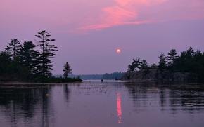 Картинка лес, облака, закат, озеро, вечер, сумерки
