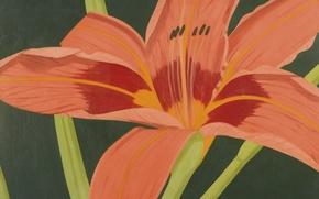 Картинка цветы, живопись, Alex Hatz
