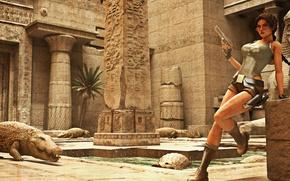 Картинка девушка, очки, крокодилы, Tomb Raider, lara croft, египет