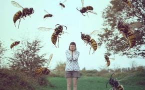 Картинка девушка, насекомые, сон, осы, пчёлы