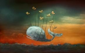 Картинка птицы, картина, кит
