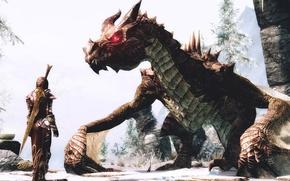 Картинка девушка, воин, skyrim, the elder scrolls v, дракон.