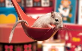 Обои белый, красный, ложка, хвостик, мышь-песчанка