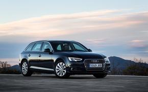 Обои ауди, Audi, универсал, Avant