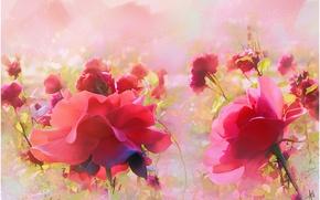 Картинка цветы, розы, живопись