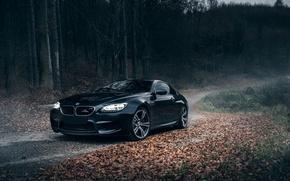 Картинка BMW, Schnitzer