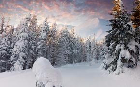 Картинка зима, лес, облака, снег, горы, сугробы, ёлки
