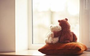 Картинка любовь, игрушка, медведь, окно, мишка, пара, подушка, love, друзья, toy, bear, couple, window, cute, friends, …