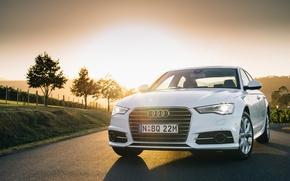 Картинка 2015, quattro, AU-spec, седан, кватро, S line, TDI, Sedan, ауди, белая, Audi
