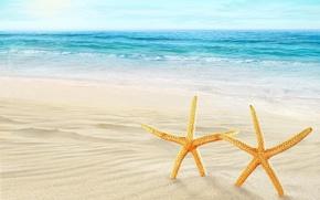 Картинка море, природа, лето, небо, снаряды, пляж, облака