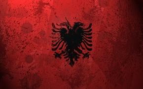 Обои флаг, краски, Албания, Albania