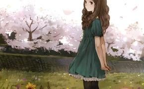 Картинка девушка, деревья, цветы, аниме, сакура, арт, kishida mel