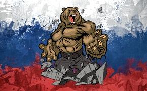 Обои красный, Россия, арт, медведь., белый, Флаг, синий