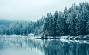 Картинка Канада, USA, США, Canada, British Columbia, Британская Колумбия, Kootenay River, река Кутеней