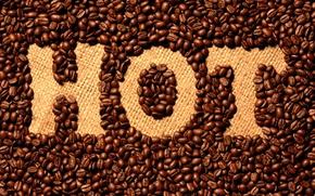 Обои Hot, кофе, надпись