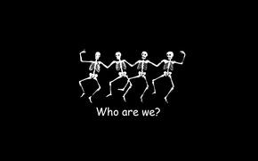 Картинка белый, чёрный, кто мы, Скелеты