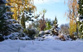 Картинка зима, снег, пейзаж, природа, красота, Осень