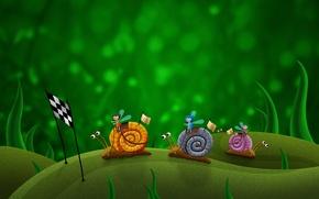 Обои зеленый, рисунок, гонки, Улитки
