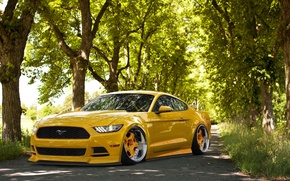 Картинка Mustang, Ford, Front, Yellow, Tuning, Stance, Wheels, 2015