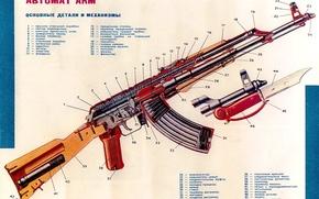 Картинка weapon, russian, kalasnikof, cutaway, assault, Kakasnikov, kalhasnikov, fusil