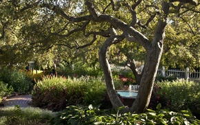 Обои забор, фонтан, сад, деревья, кусты, дорожка
