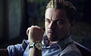 Картинка Часы, Мужчина, Актёр, Рубашка, Леонардо ДиКаприо, Watch, Leonardo DiCaprio, Man, Tag Heuer, Actor