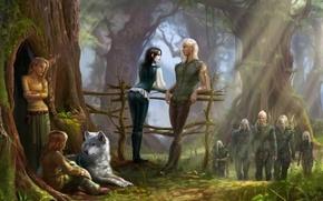 Картинка лес, дерево, волк, мох, арт, эльфы, перила, солнечные лучи, лучники