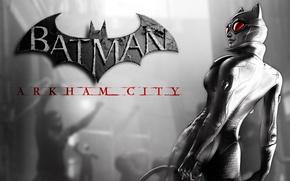 Картинка batman, логотип, женщина-кошка, arkham city, catwoman