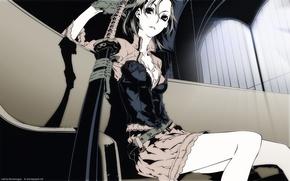 Картинка sword, weapon, Dogs Bullets & Carnage, fuyumine naoto, katana