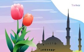 Картинка цветок, город, путешествия, мечеть, туризм, Турция, минарет, страна, Turkey, государство