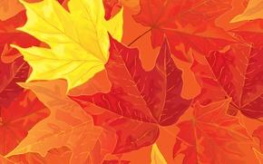 Картинка листья, фон, autumn, leaves, осенние, fall, maple
