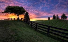 Картинка поле, небо, облака, деревья, забор