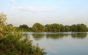 Картинка лето, река, Кубань, Ивы