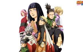 Картинка game, anime, ninja, asian, Temari, manga, Uchiha Sasuke, shinobi, japanese, Hatake Kakashi, Haruno Sakura, Hyuuga ...