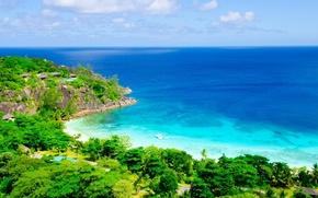 Картинка море, деревья, пейзаж, природа, тропики, лодка, trees, sea, landscape, nature, boat, tropics