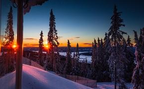 Картинка зима, лес, снег, деревья, горы, утро