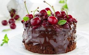 Картинка торт, cream, food, cake, десерт, dessert, сладкое, chocolate, cherries, вишни, крем, шоколад, пирожное, еда