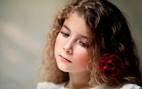 Картинка цветок, роза, портрет, девочка, child photography