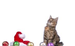 Картинка кот, шапка, котенок, cat, новый год, New Year, шарики
