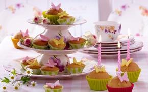 Обои цветы, flowers, свечи, food, cake, cakes, десерт, dessert, сладкое, чашки, cups, table, стол, candles, кексы, ...