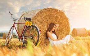 Картинка поле, девушка, велосипед, подсолнух, sunflower, стог сена, girl bike, field haystack