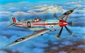 "Картинка war, art, airplane, painting, aviation, Supermarine Spitfire F Mk.21 ""Contraprop"""