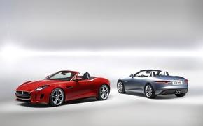 Jaguar,F-Type,Ягуар,Ф-тайп,родстер,передок,вид сзади,красный,серебристый,фон обои