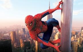 Обои Spider man, нью йорк, Небоскребы, Человек паук, город